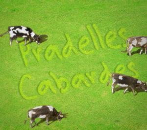 pradelles-cabardes (31)